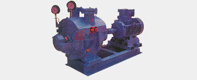 Water-Ring Vacuum Pumps